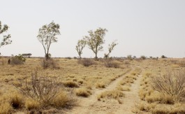 vacant land in vryburg